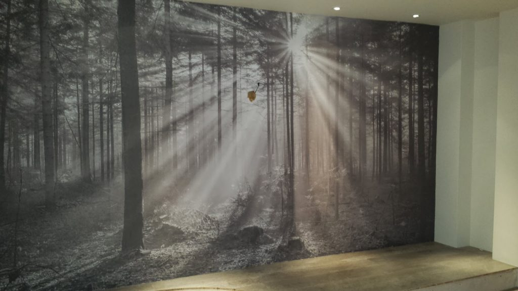 Printed Mural - Woodland scene
